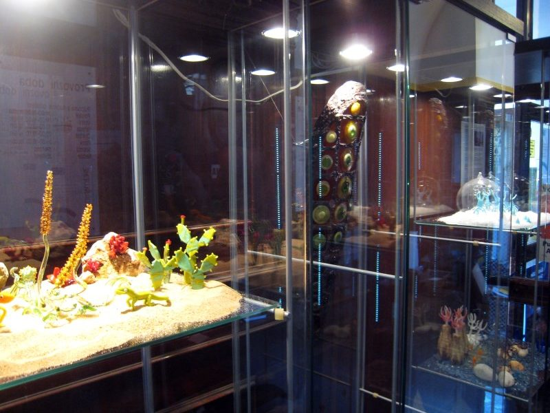 Foto z výstavy v Severočeské vědecké knihovně v Ústí nad Labem