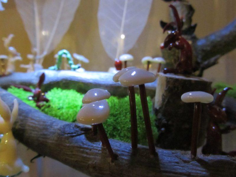 Lesní svět