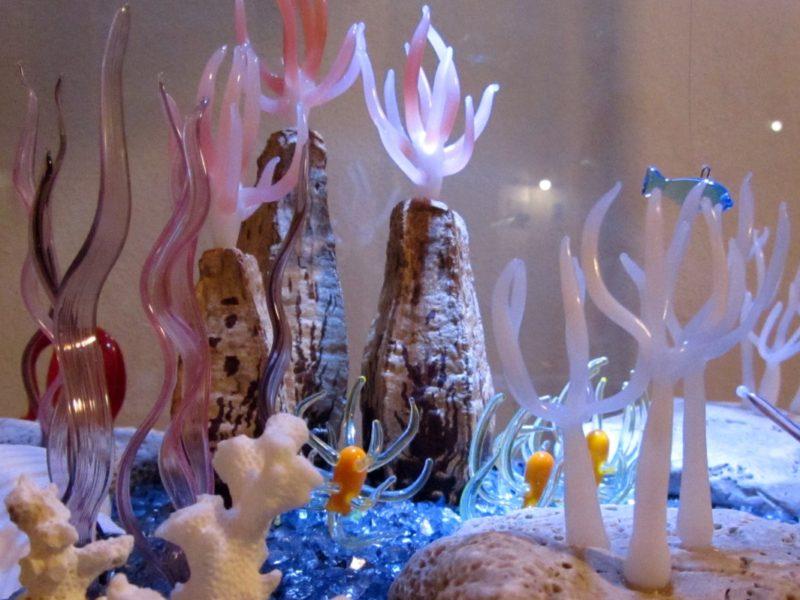 Podmořský svět